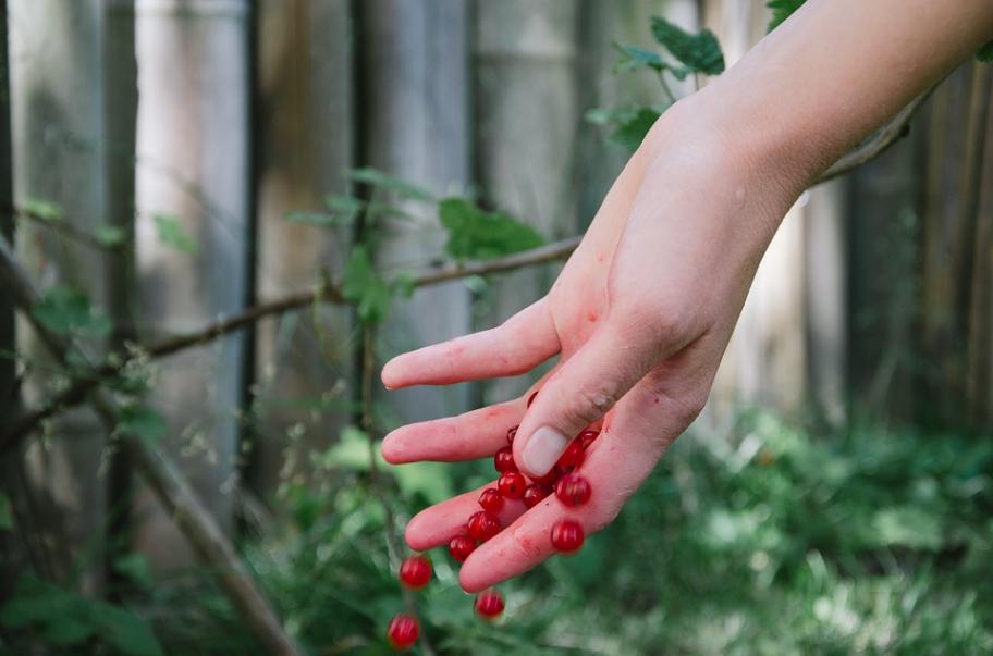 Consejos para mantener unas manos perfectas